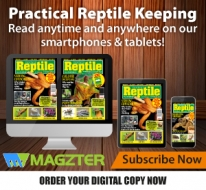Guideline Publications Practical Reptile Keeping Digital Subscription