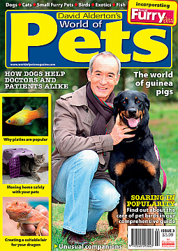 Guideline Publications World of Pets  Issue 3