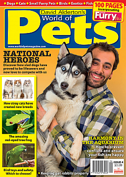 Guideline Publications World of Pets  Issue 4